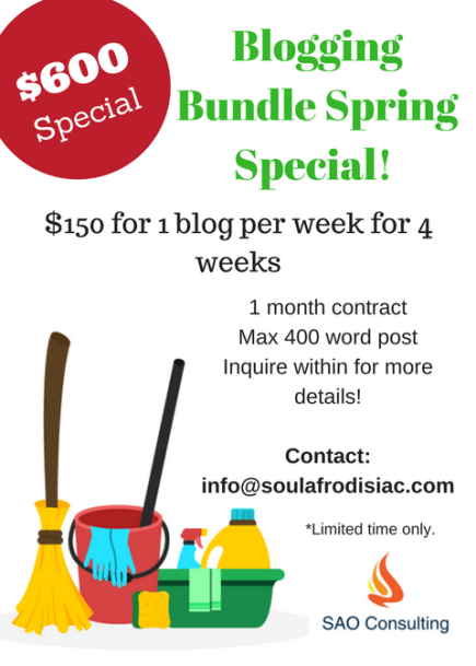 blogging-bundle-special-flyer_saoconsulting